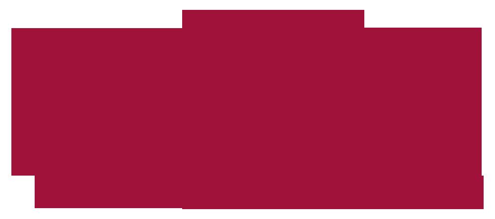 turk-telekom.png